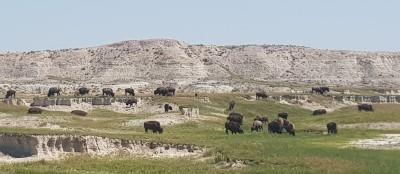 Buffalo Gap, South Dakota